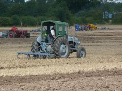 Ferguson TEF20 with cultivator