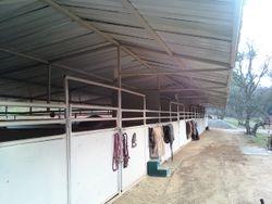 12x20 stalls