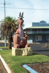 Charlie the Roo in Charlevilles Main Street - April 2007