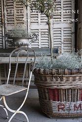 #24/093 Vignette Vandage Basket BASKET SOLD