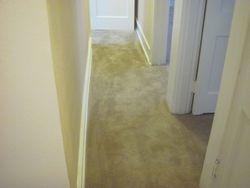 Hallway (after)