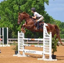 Theo the Super Pony