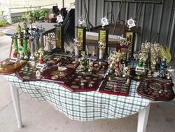 2011 Trophies