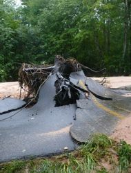 Giant tree root was swept away in the breaking of a dam on Denton Road in Douglasville