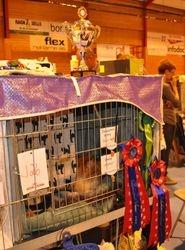 Basko`s cage on Saturday!