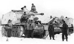 (Sd. Kfz. 164), Panzerjäger Hornisse