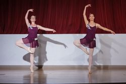 Selections from Swan Lake Pas de Trois