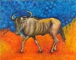 Wildebeest