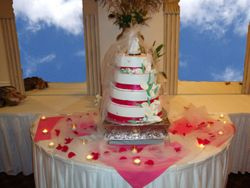 Occasion Cakes 8