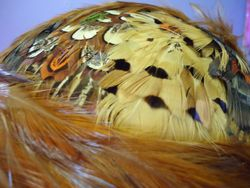 Vintage Brown Feather Fascinator Close Up