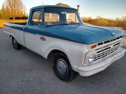 17.66 Ford F100
