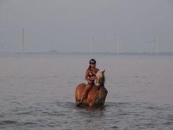 Nozem & Nanita in de zee