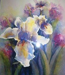 Iris Tranquility