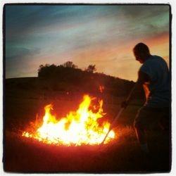 Burdock burning... boy do we have burdock!