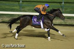 Blame's Final Breeders' Cup Workout