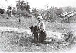 Westlake c1952
