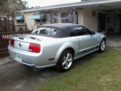 Laurie T.----------Ford Mustang