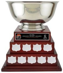 Beautiful annual trophies. Many choices