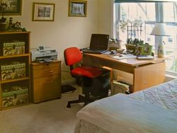 The Office/ Guest Bedroom.