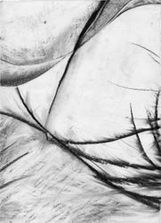 Abstract Eleanor MacFarlane