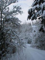 Jan 10, snow 11