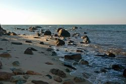 A walk along the shore at Great Rock Bight preserve