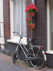 Dutch Bicycle Scene
