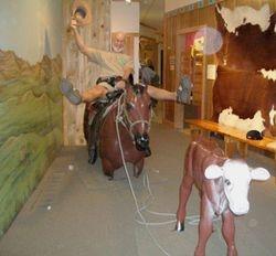 Bob on 'Cowboy Horse'