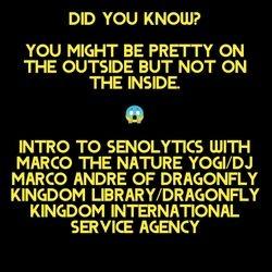 "Underground Intelligence Music & Media    Bright Star Apothecary Harm Reduction Initiative    With Marcus ""DJ Marco"" Andre The Nature Yogi  Arnico Apparel The Blog by DJ Marco Andre The Nature Yogi"