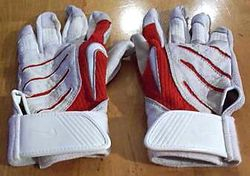 Colby Rasmus 2009 Game Used Batting Gloves