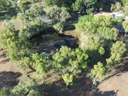 Barramundi Pond
