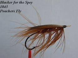 Blacker Poachers Fly