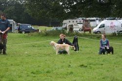 Stourhead companion show 2 Aug 09