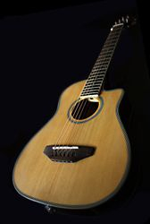 Colin's Beaver Creek Travel Guitar