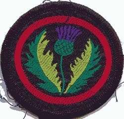 Thistle Patrol Badge