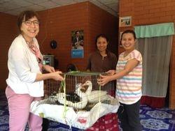 Donating ducks