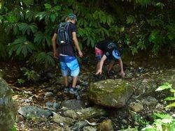 Exploring Rocks Waiorongomai