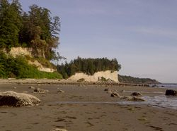 "tall sandy cliffs at ""the Cut"" at the beach on Thormanby Island"