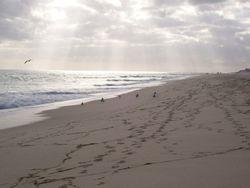 Barilla Beach Nov 2009