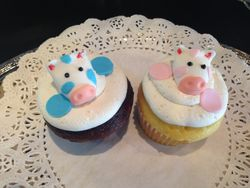 Pink and Blue Cow Cupcakes