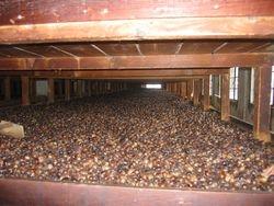 Nutmeg factory, Caribbean sailing vacation