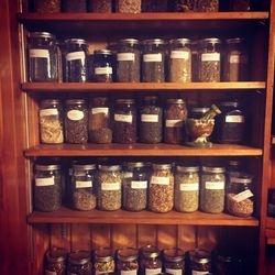 Apothecary Herbs