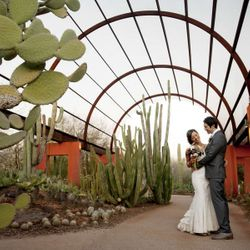 An Aviary Wedding
