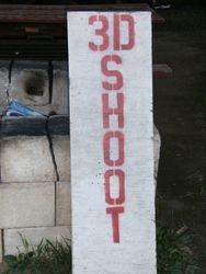 3-D Shoots