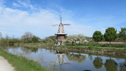 Windmill in Holland Michigan