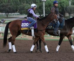 Beholder Turns Back