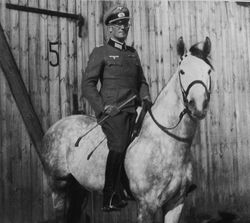 Cavalry Officer: