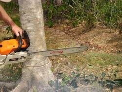 Treel Felling 2