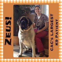 2013 Largest CAC K9 Patient