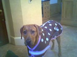 Elvis' sister Harriet in her new coat
